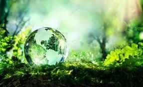 Globe - foret - nature